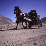 tibet paard en wagen